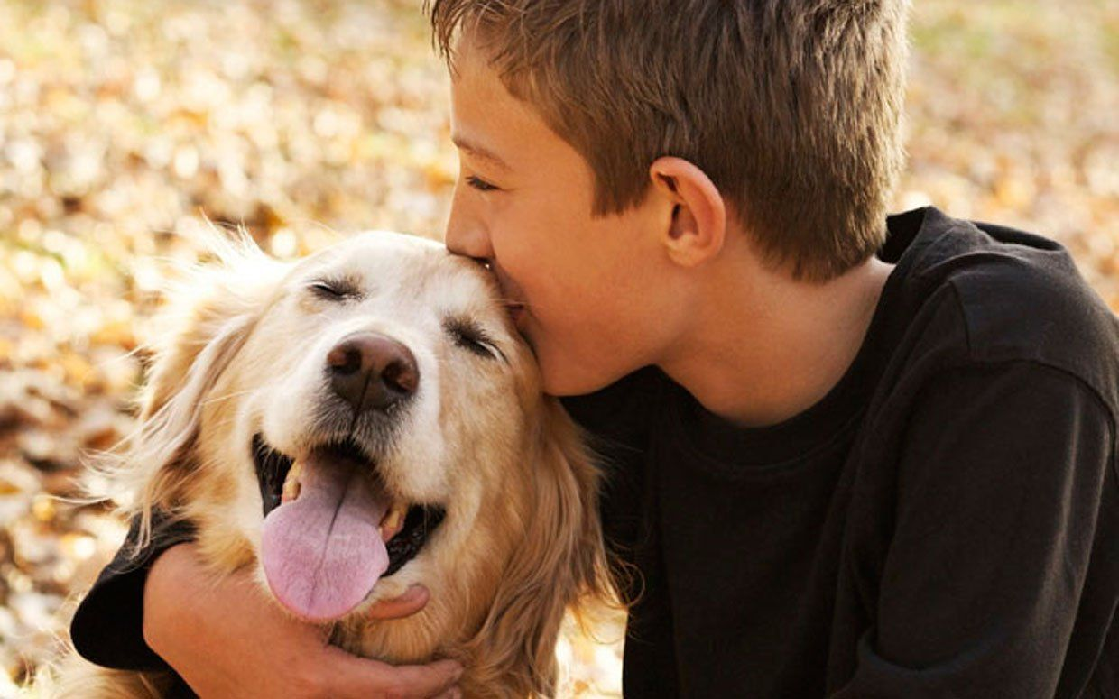 8 Ways Our Pets Keep Us Healthy http://parade.condenast.com/311460/michelechollow/7-ways-our-pets-keep-us-healthy/