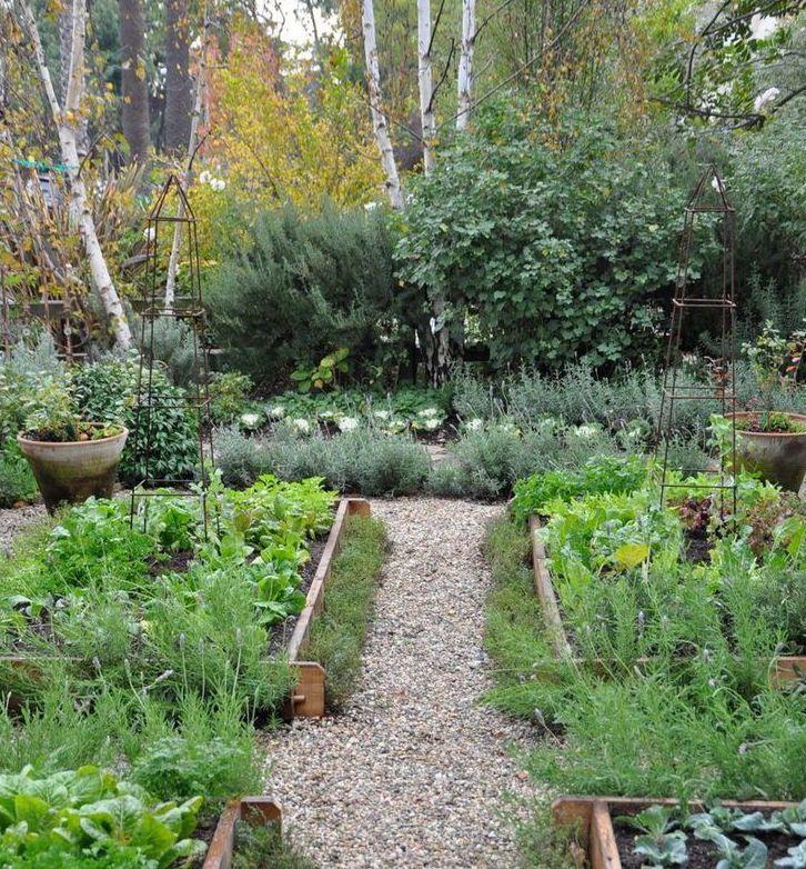 18 Edible Garden Designs Ideas: Edible Garden, Garden