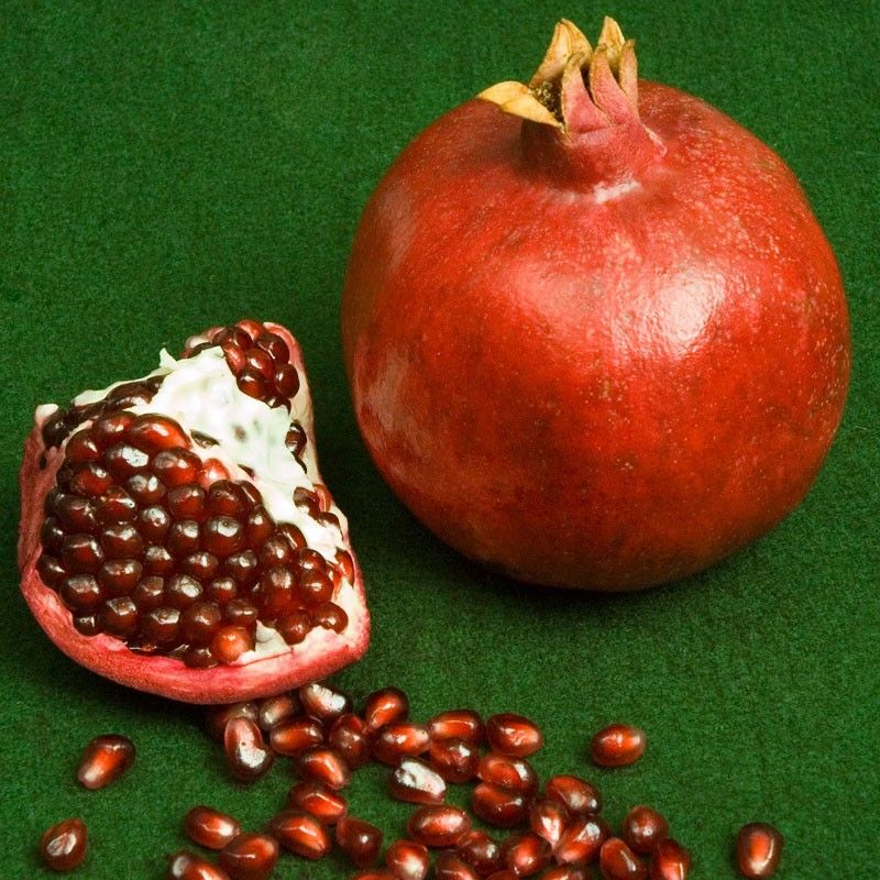 Parfianka Pomegranate Tree (Standard) (Potted