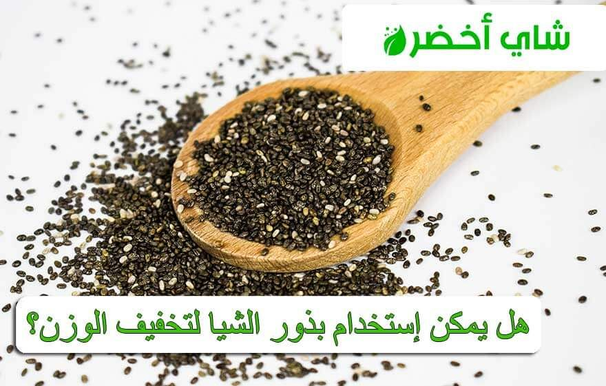 هل يمكن إستخدام بذور الشيا لتخفيف الوزن Chia Seeds Food Seeds