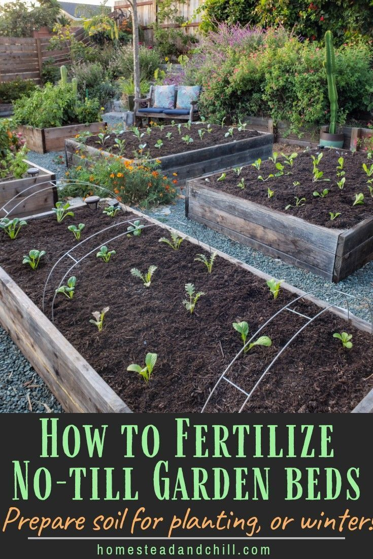 How to Prepare & Amend Garden Bed Soil Before Planting or Between Seasons is part of Garden beds, No till garden, Plants, Garden soil, Backyard garden, Garden landscaping - Learn how to prepare and amend garden bed soil for planting, including removing old plants, notill gardening, fertilizer, compost, mulch & more