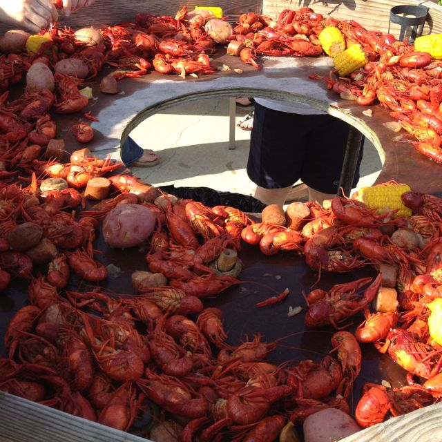 Outdoor Kitchen Jackson Ms: Crawfish Table With Trash Can