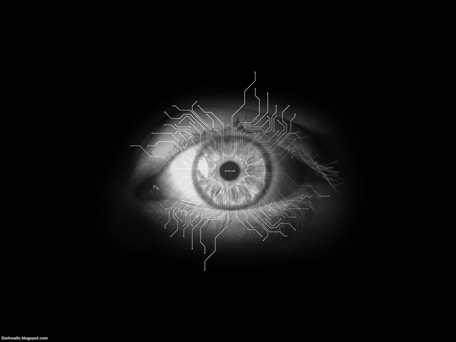 scary eyes scary | Scary Eyes Wallpapers 59| Dark Wallpaper Download