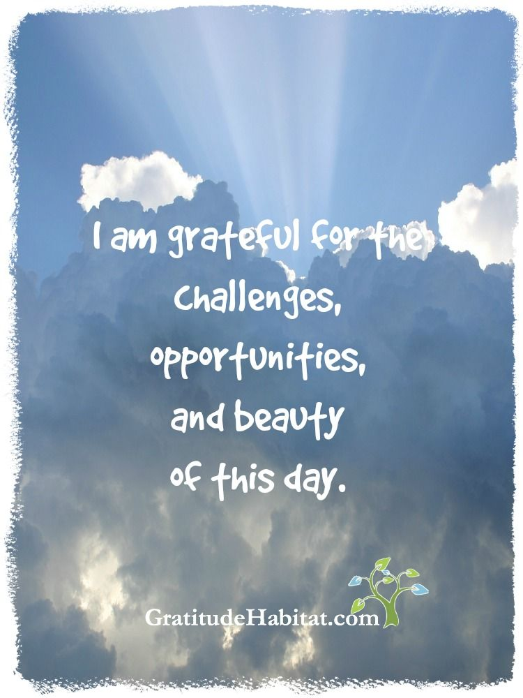I Am Grateful..... Visit Us At: Www.GratitudeHabitat.com