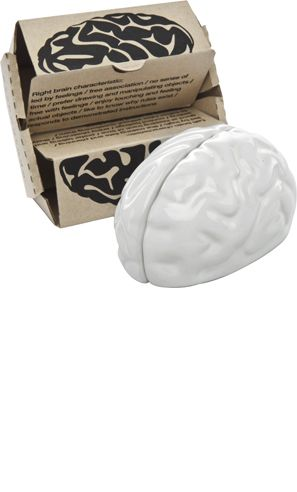 "BRAIN SALT & PEPPER SHAKER    Ceramic salt & pepper shakers of two brain halves.  2.3"" by 3.2"" by 1.9""    $24.00"