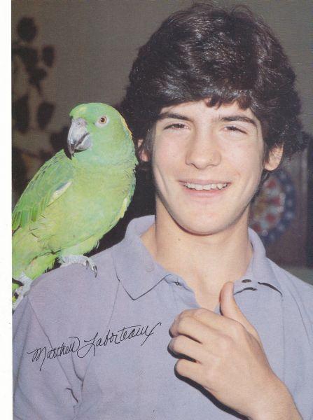 Matthew Laborteaux | Matthew Laborteaux | Birds, Animals ...