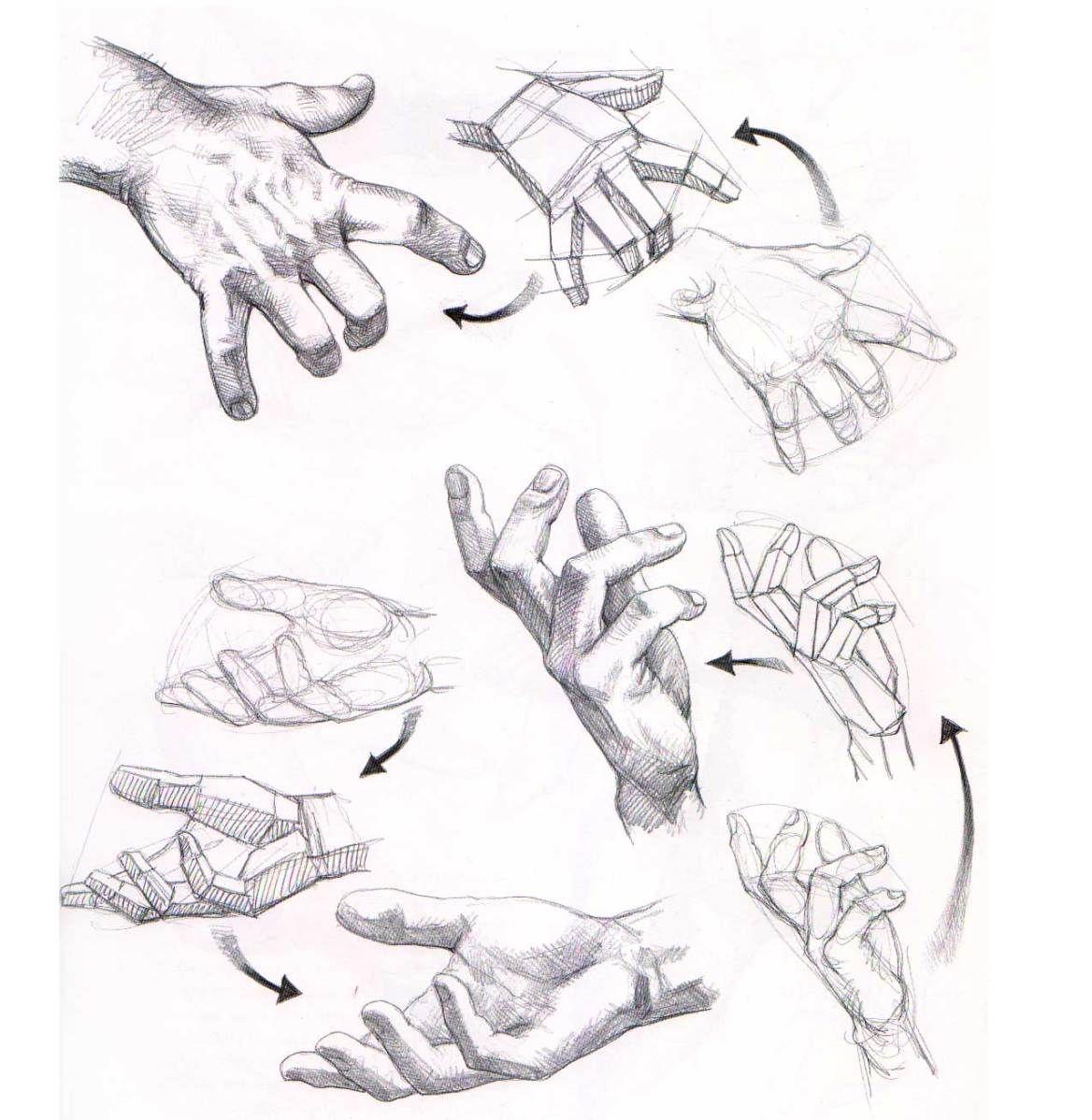 Aprender a dibujar manos y pies