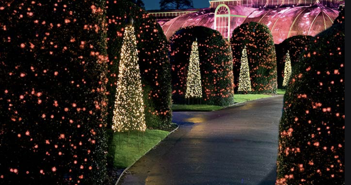 Kew Gardens London It S The Most Magical Time Of The Year Christmas In London 2019 There Is No Pl Kew Gardens Christmas London Christmas Kew Gardens London