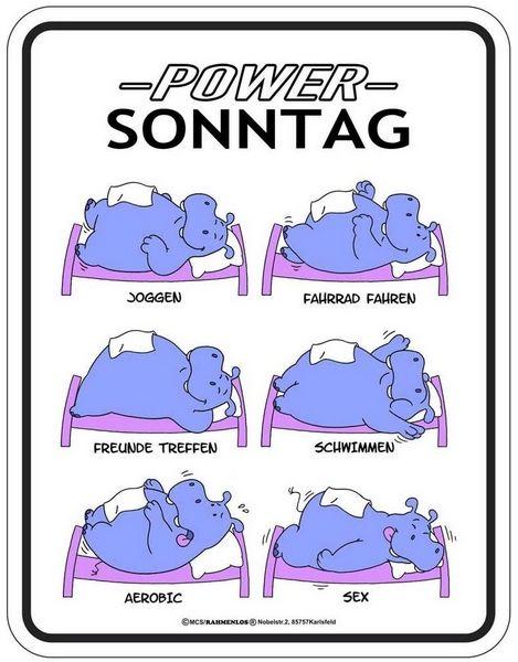 lustige sprüche sonntag POWER Sonntag | witzig | Pinterest lustige sprüche sonntag