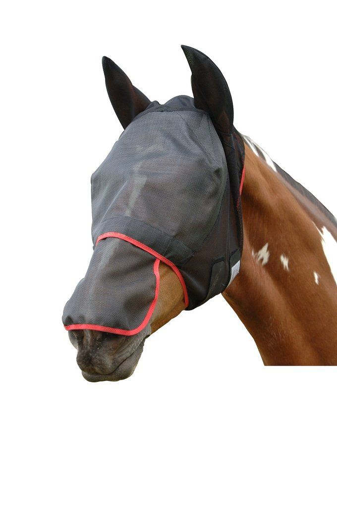 Horse Wear Protack Headcollar Nylon