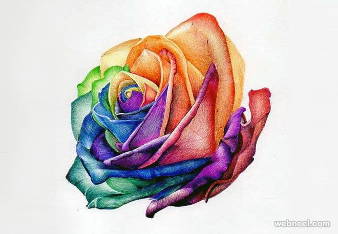 45 Beautiful Flower Drawings And Realistic Color Pencil Drawings Beautiful Flower Drawings Flower Drawing Flower Drawing Tutorials