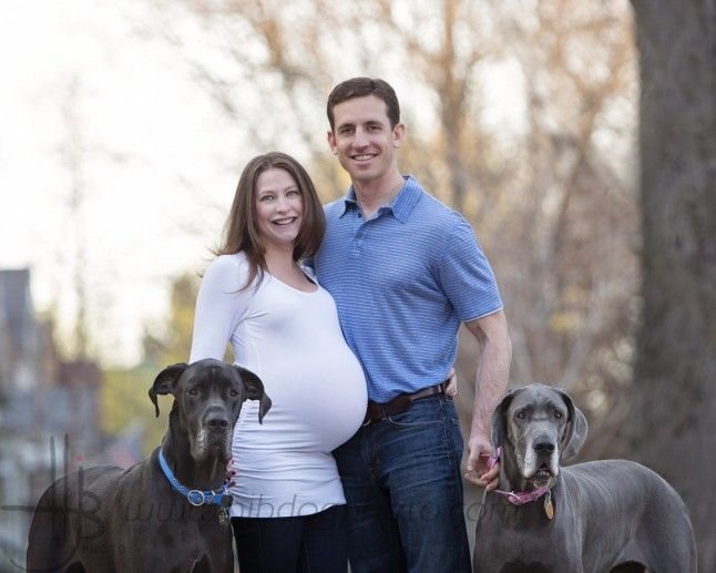 Owners Outside In Spring With Their Great Dane Dogs Photos Of Pets
