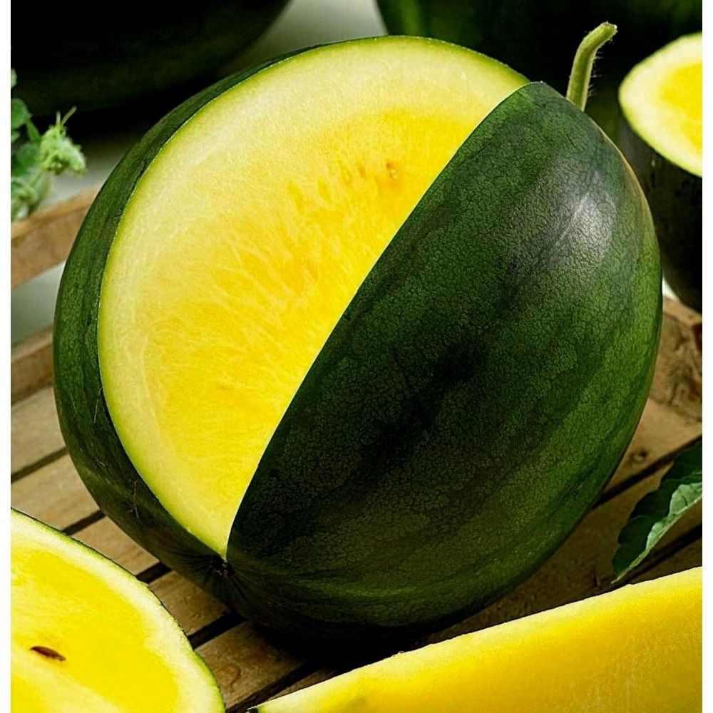 Russian High Quality seeds Watermelon Golden baby