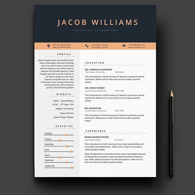 New Cv Template From Scrept Available In Microsoft Word Download