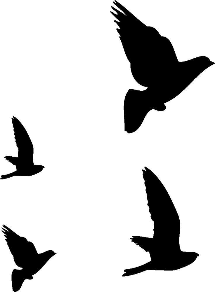 Resultado La imagen de la silueta de aves de vuelo | Proyectos que ...