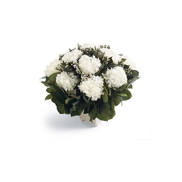 Bridal Veil Floral Arrangement ($339) ❤ liked on Polyvore featuring home, home decor, floral decor, floral arrangement, hydrangea arrangement, hydrangea bouquet and flowers hydrangeas bouquets