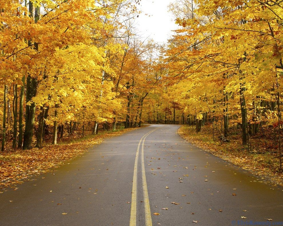 21 Spectacular Places All People Who Love Fall Colors Must Visit Road Trip Usa Vacation Locations Scenic Drive