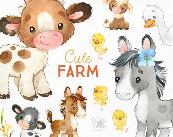 Cute Farm Watercolor Country Clipart Horse Cow Chicken Etsy In 2021 Animal Clipart Clip Art Baby Farm Animals