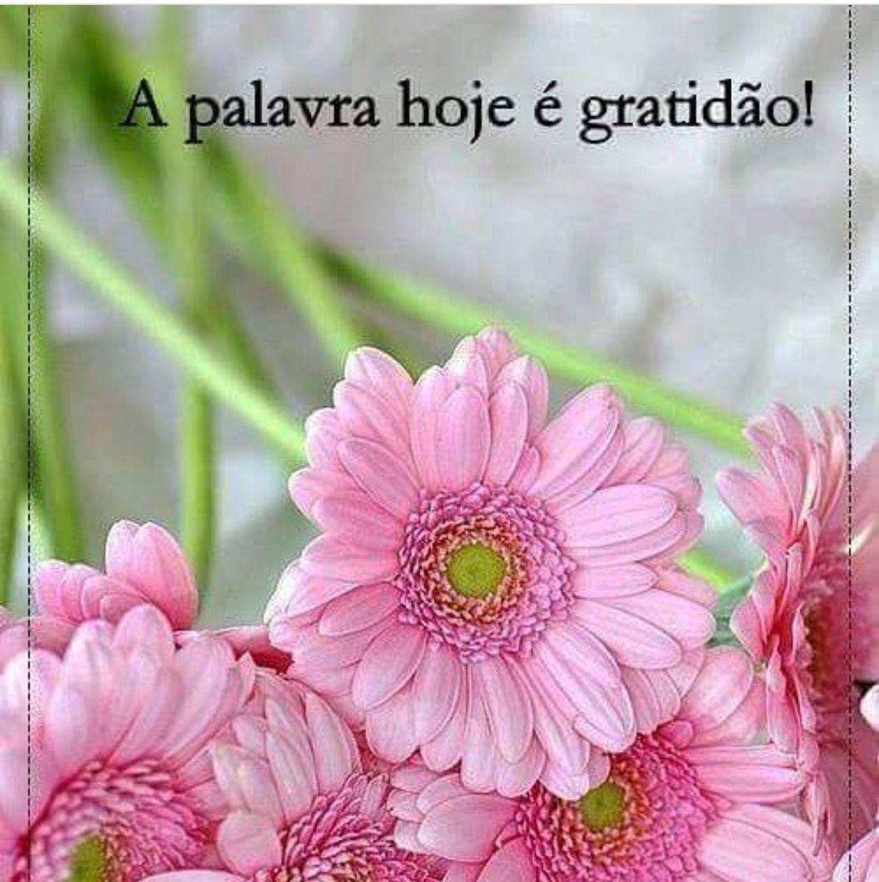 Pin von Tanya auf Bom Dia ☼ | Pinterest