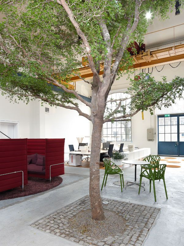 Green office with green Vegetal chairs by Ronan & Erwan Bouroullec. The Alcove Highback Sofa was designed by them, too.