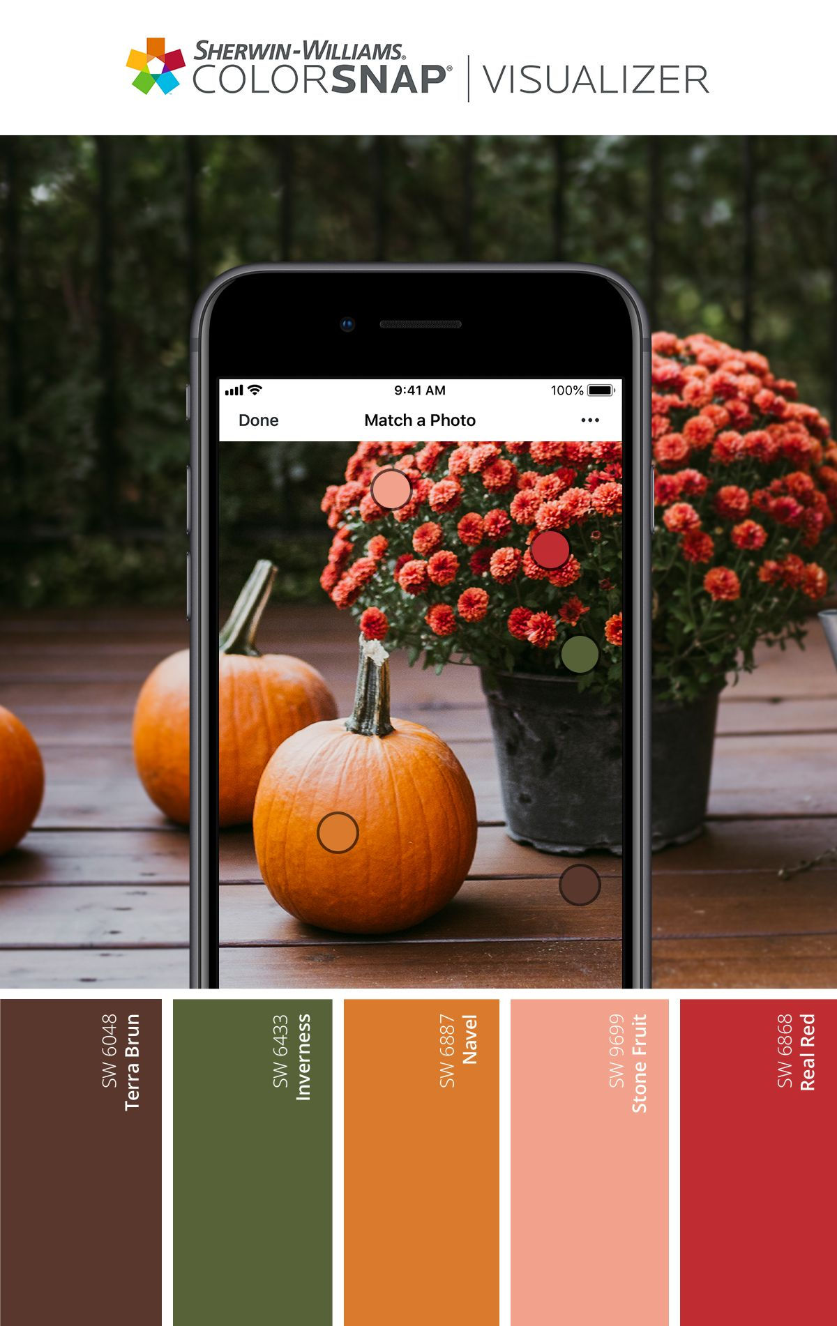 Festive Fall Inspired Paint Palette Sherwin Williams Paint Color App Paint Color Inspiration Matching Paint Colors