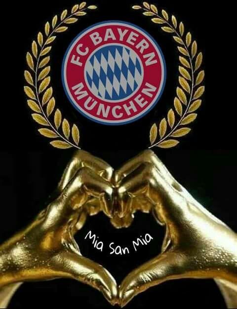 Bvb Bayern Lustig