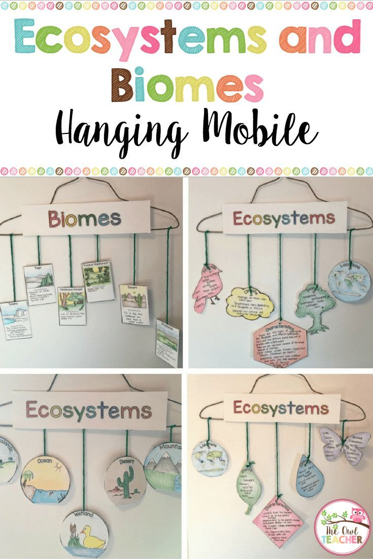 Ecosystems Hanging Mobile {Biomes too} Science classroom
