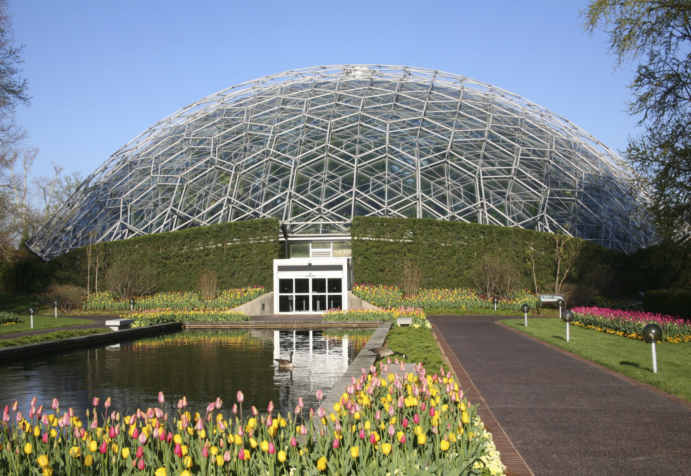 65524c3becc0a476565fa41110593afe - Botanical Gardens St Louis Light Show