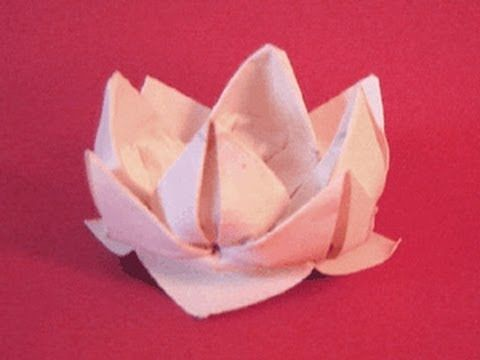 origami faltanleitung f252r eine lotuslilie wwworigamifun