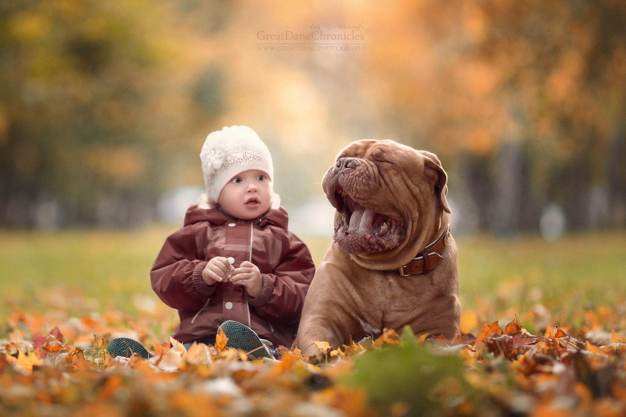 Little Kids And Their Big Dogs Andy Seliverstoffs Photography - Tiny children and their huge dogs photographed in adorable portraits by andy seliverstoff