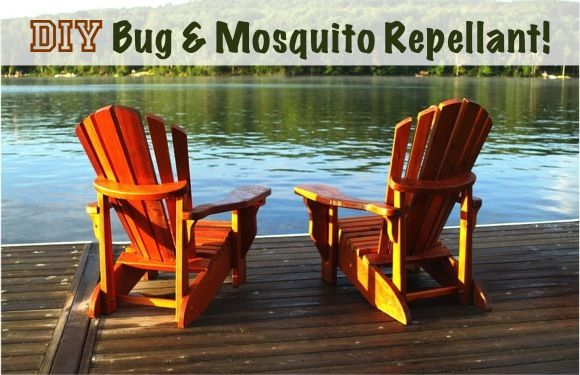 """DIY Bug Repellent in Ask Your Frugal Friends, Camping, Chic and Crafty, DIY, Health and Fitness.  3.5 ounces witch hazel 1/2 tsp lemongrass oil 1/2 tsp eucalyptus oil 1/2 tsp citronella oil  Combine all ingredients in a 4-oz. spray bottle, and shake before each use!"""""""