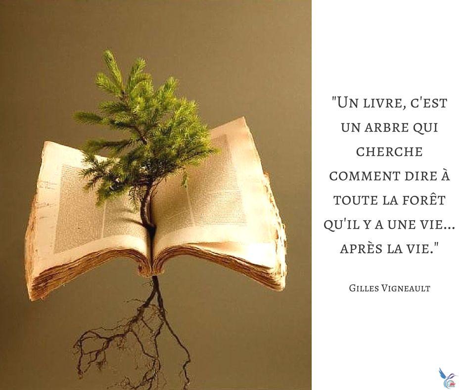 Pensée Citation Amour Livres Lecture Lire Livre