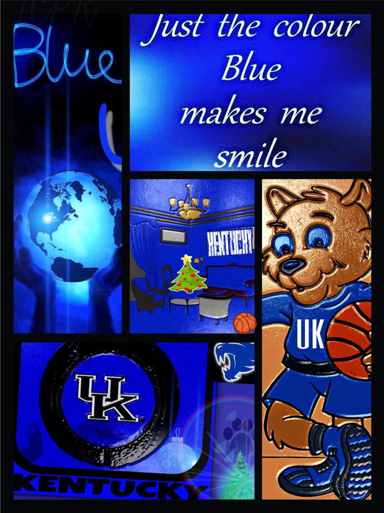 Kentucky Wildcats Big Blue Nation Wild Cats Kentucky Wildcats