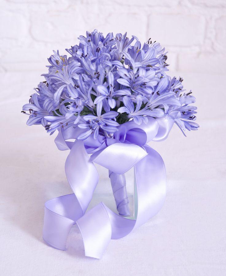 Bridesmaid Bouquet Of Agapanthus Flowers F Agapanthus Beautiful Wedding Flowers Flowers Bouquet Flower Arrangements