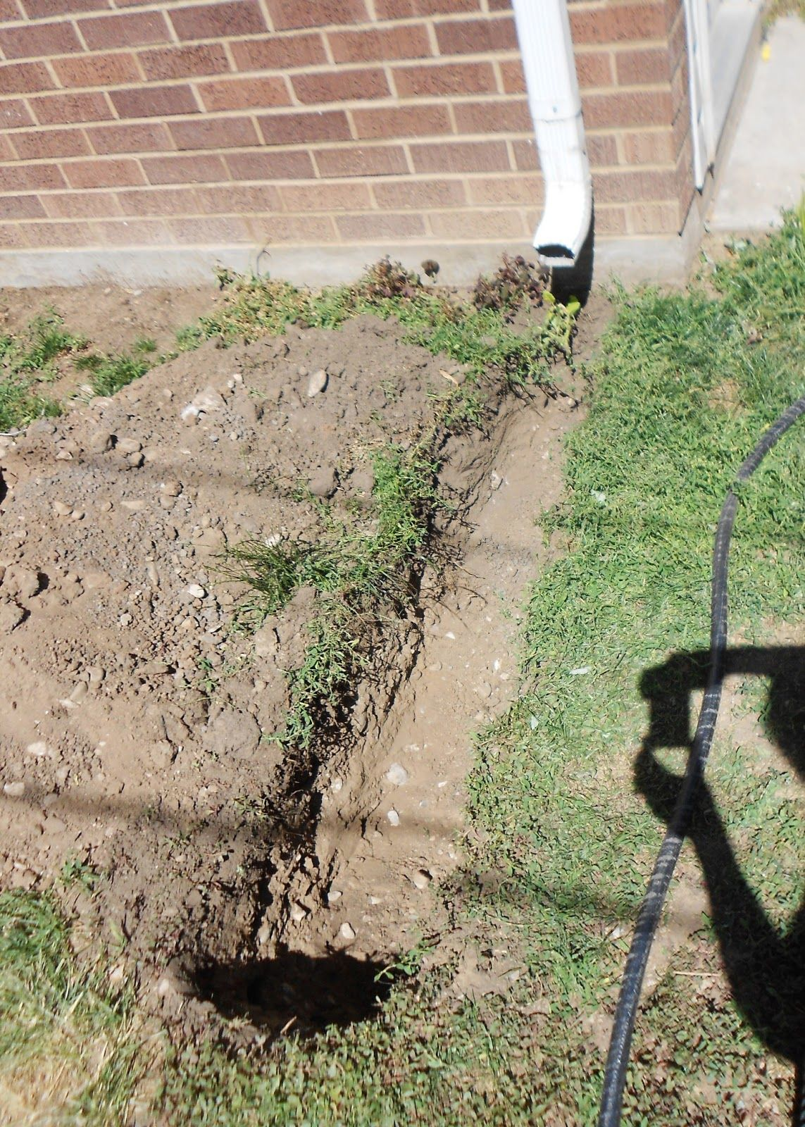 How to bury a gutter downspout french drain container for Downspout drain