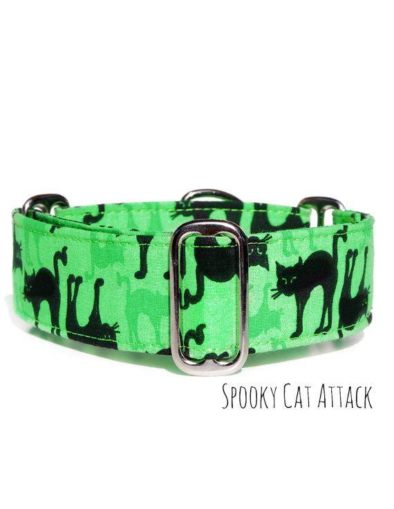 Halloween Cat Dog Collar Lime Green Wide Custom Mar Martingale