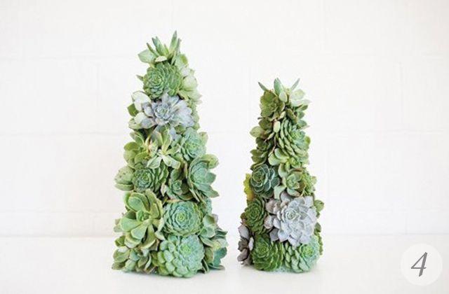 Succulents Christmas Trees Christmas Pinterest