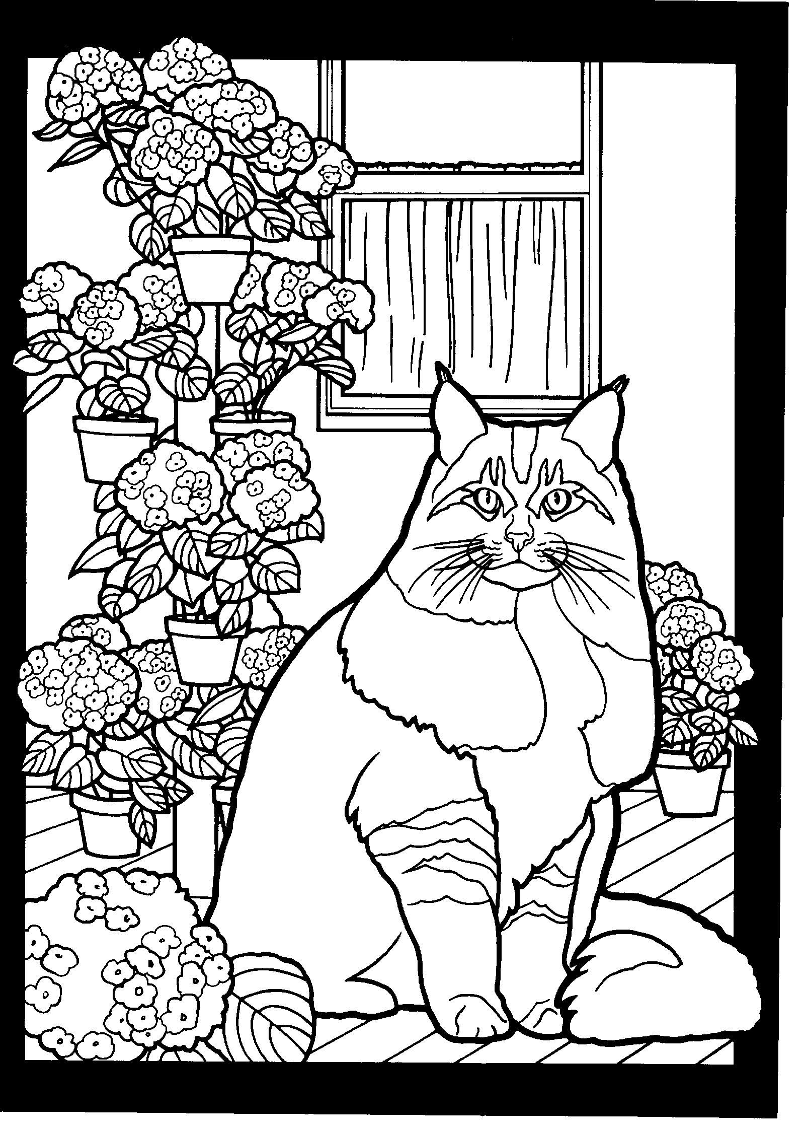Pin on Just cats coloring 2