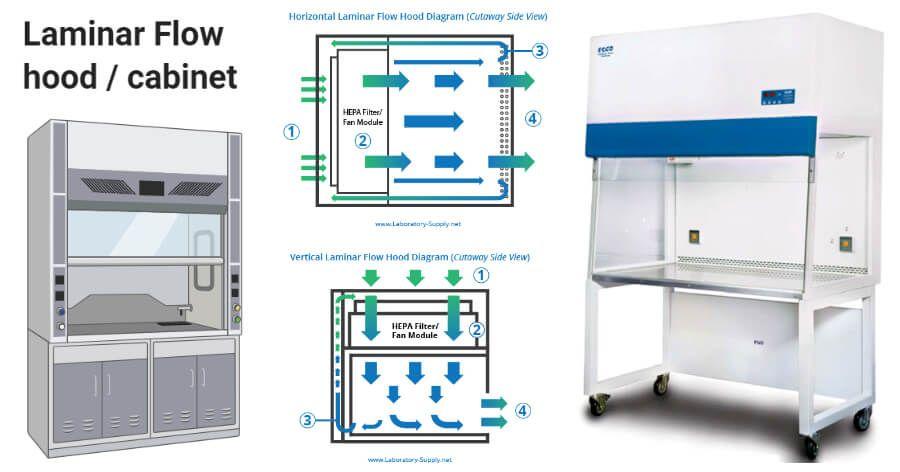 Laminar Flow Hood Cabinet Definition Parts Principle Types Uses Flow Hood Cabinet