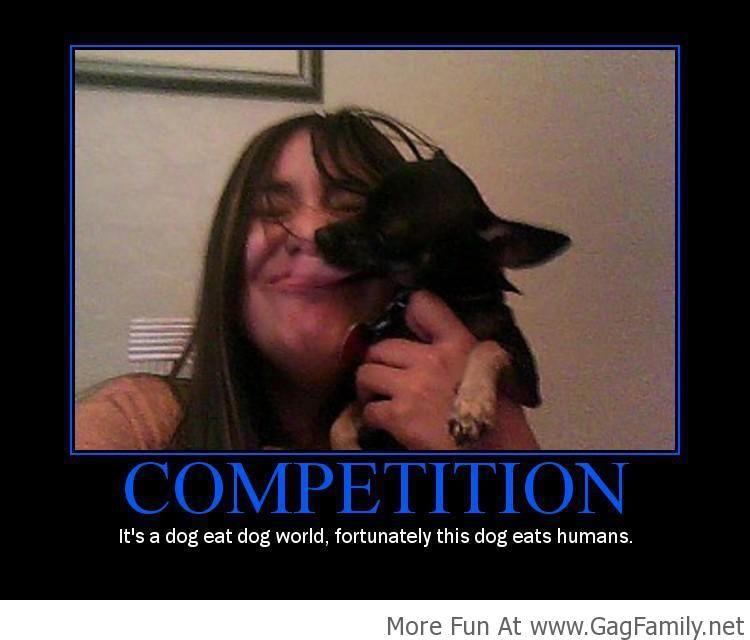 Dog Eat Dog World? Or your face?