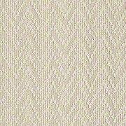 Shaw Floors Br Final Piece Area Carpet Carpet Sale Carpet Stores