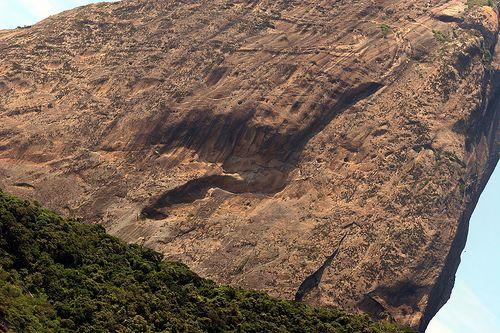 Sombra Do Passaro Ibis Na Pedra Do Pao De Acucar Com Imagens