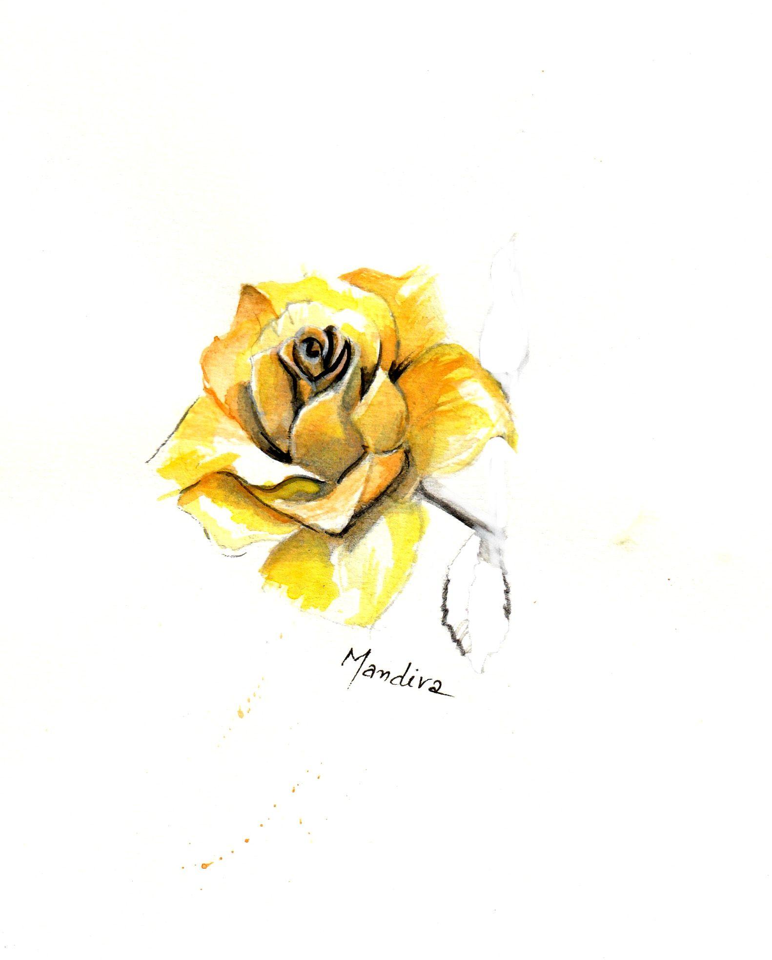 Yellow Rose Tattoo Custom Design By Mandira Watercolour Tattoos
