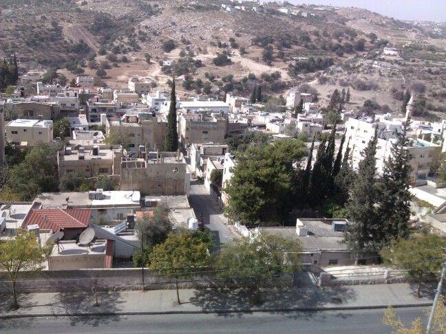 Wadi Alser