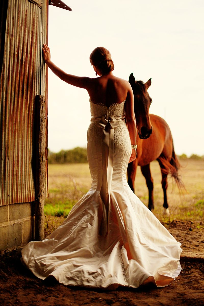 Love It Wedding Pics Gowns Ideas Horse Photos Before: Horse For Western Wedding Dresses At Websimilar.org