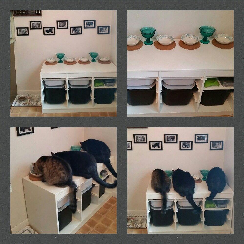 Ikea Storage Cabinet Turned Into Cat Feeding Station Large Bins