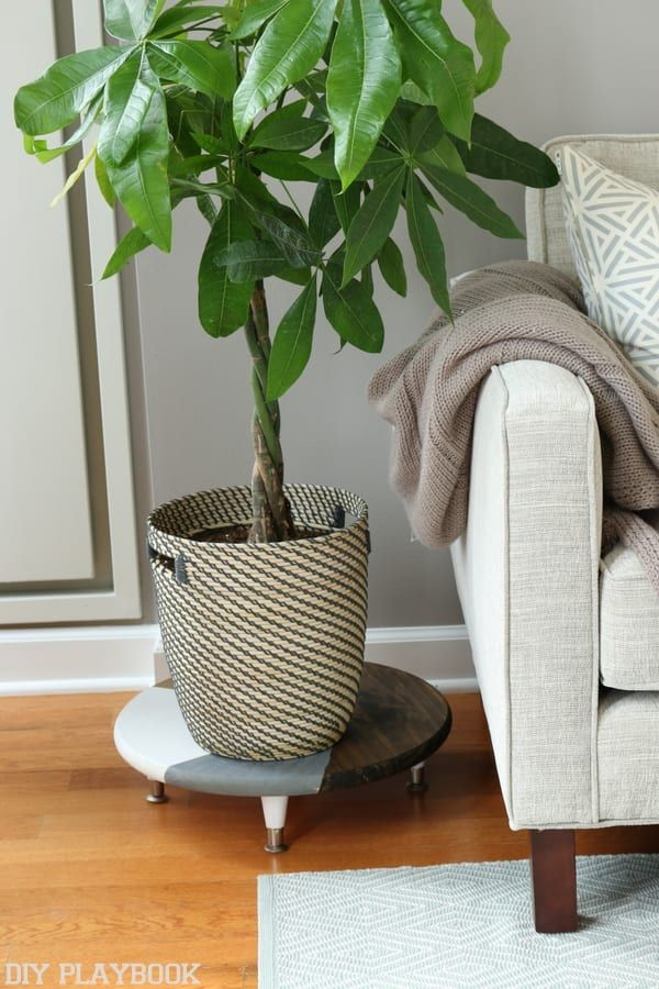 Easy DIY Plant Stand StepByStep Tutorial is part of Living Room Plants Easy - Want to jazz up your houseplants  This super easy DIY plant stand project is possibly the easiest DIY project we've done and we LOVE the finished look! Check out this stepbystep tutorial on how to make this simple plant stand to add a new chic design element to your home