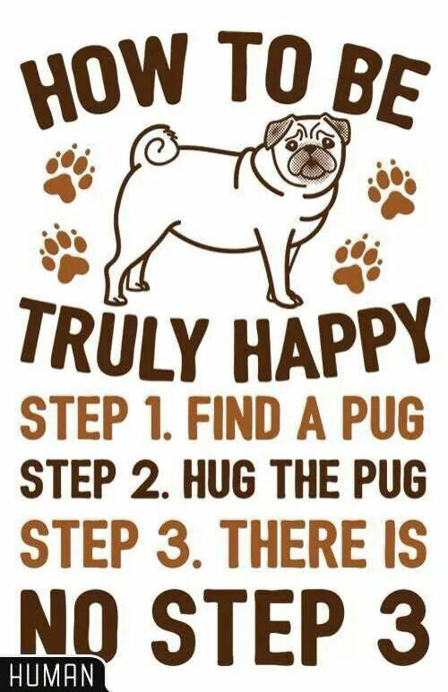How To Be Truly Happy Pug Hugs T Shirts Lookhuman Pugs Pug