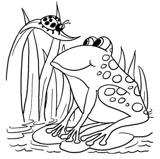 Frog And Ladybug With Images Ladybug Coloring Page