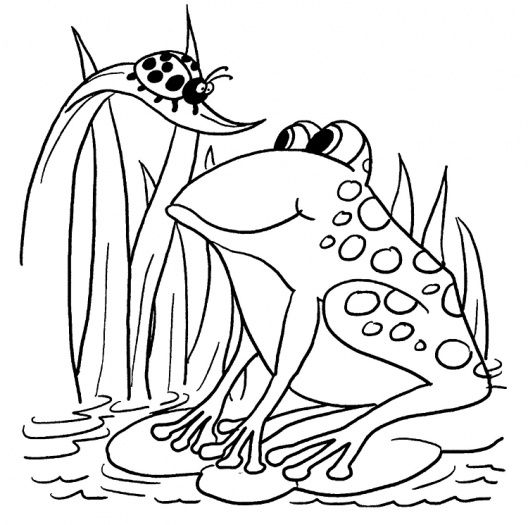 Frog And Ladybug With Images Ladybug Coloring Page